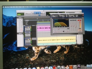 Max Bass for Pro Tools HD
